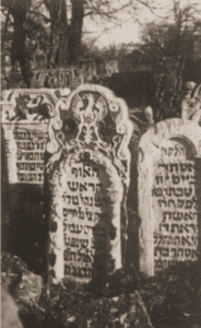 Image of Tombstones in the old Jewish cemetery in Stryj.